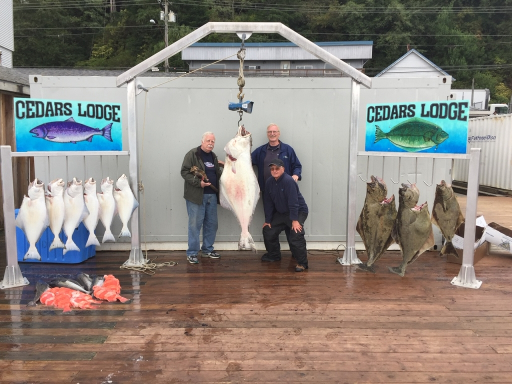 3 men with huge halibut
