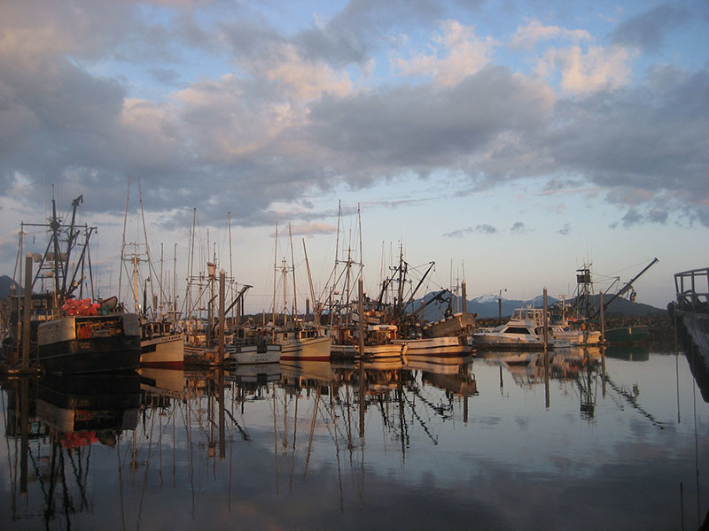 alaska charter fishing boat harbor at sunset