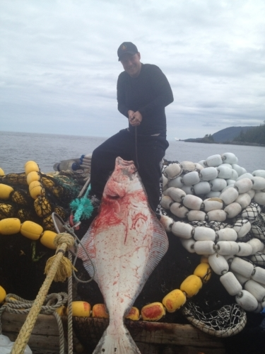 catch halibut in alaska ketchikan