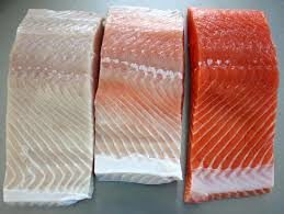 How To Ship Fresh Caught Salmon Home From A Fishing Guide